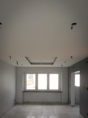 Faux Plafonds-10