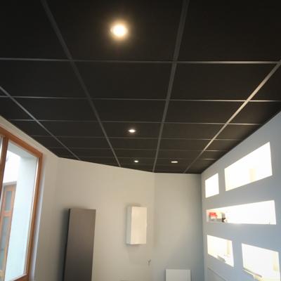 Faux Plafonds-9